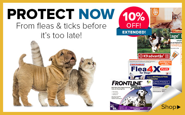 Shop Flea & Tick topicals for 10&37; Off