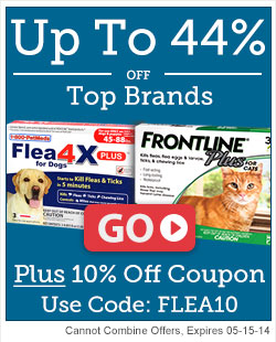 Exclusive 10% Off offer