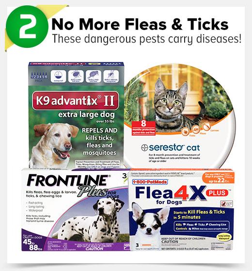 2. No More Fleas & Ticks