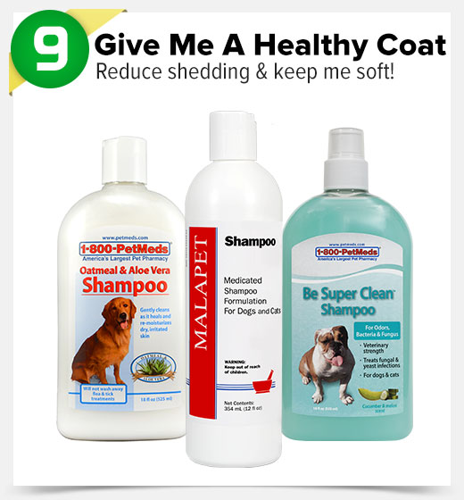 9. Give Me A Healthy Coat