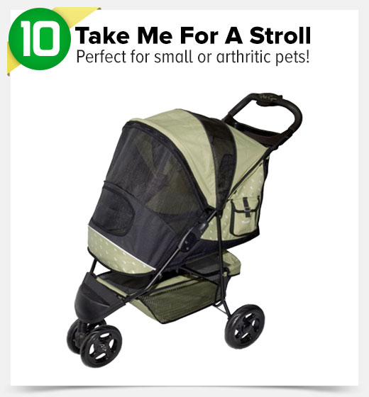 10. Take ME For A Stroll