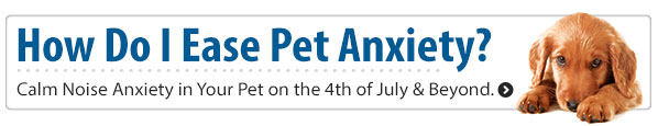 How do I ease pet anxiety?