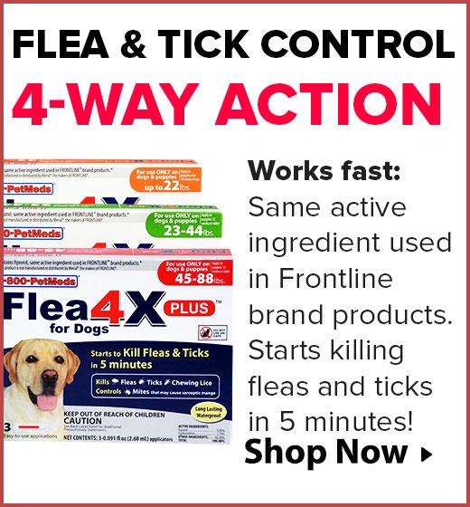 Flea4X PLUS
