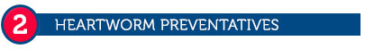 2. Heartworm Preventatives