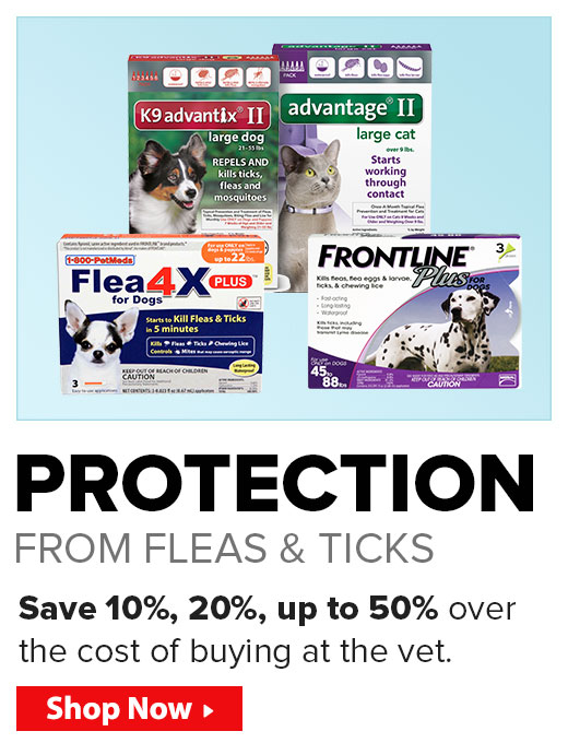 Protection from Fleas & Ticks