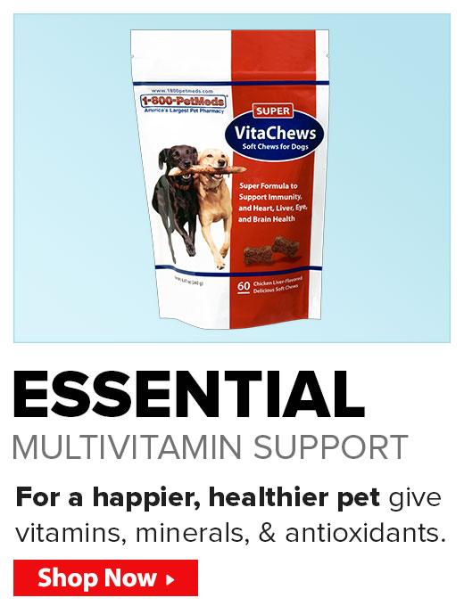 Essential Multi-Vitamin Support