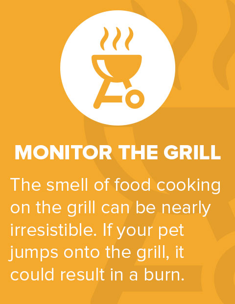 Monitor The Grill