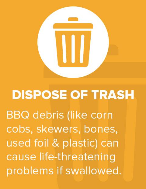 Dispose of Trash
