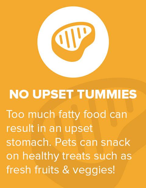 No Upset Tummies
