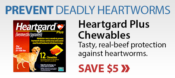 Save on Heartgard Plus Chewables
