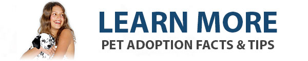 Learn More: Pet Adoption Facts & Tips
