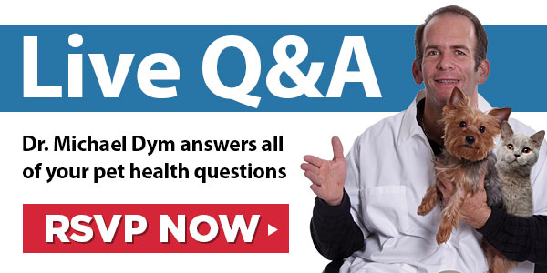 Live Q&A with Dr. Michael Dym.