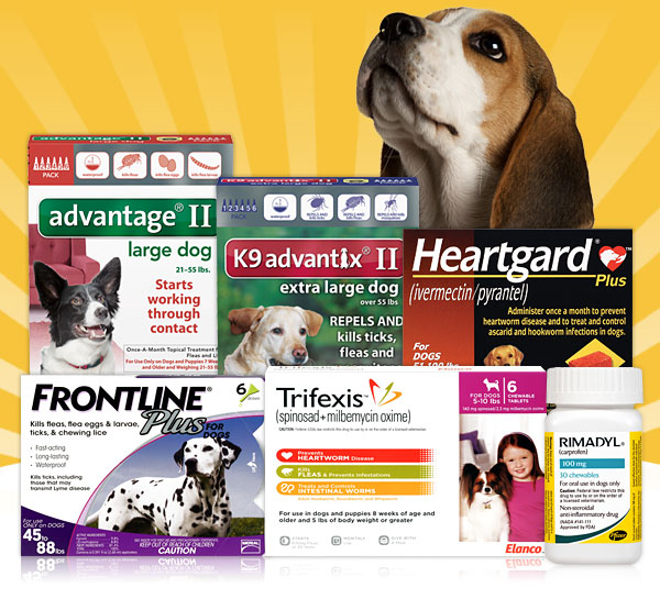 10% OFF Cyber M... 1 800 Petmeds Coupons