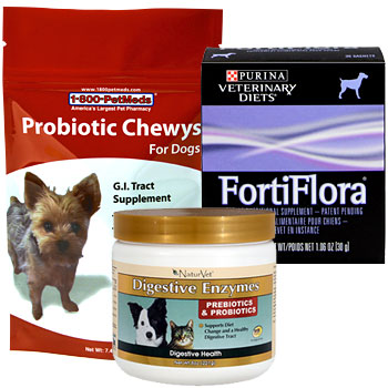 Help balance your pet's digestive tract
