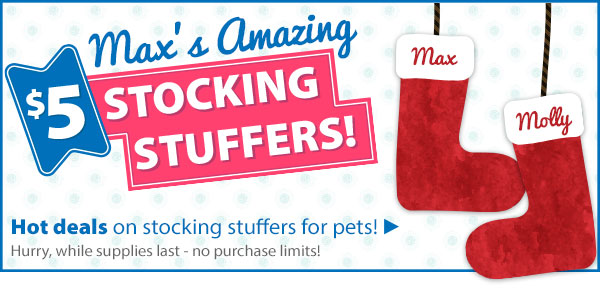 Max's Amazing $5 Stocking Stuffers!