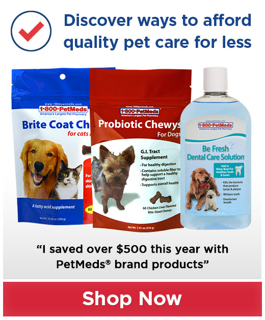 Quality pet care for less