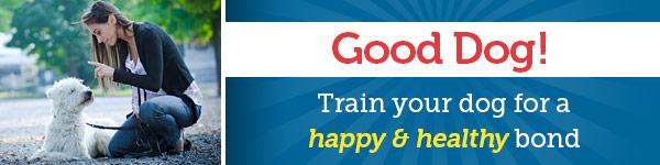 Good Dog! Train your dog for a happy & healthy bond