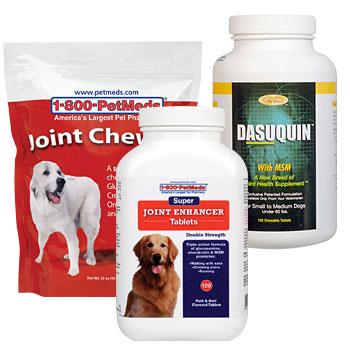 Help your pet walk & run easilys
