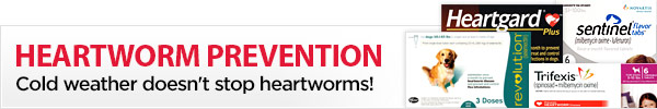 Cold weather doesn't stop heartworms!