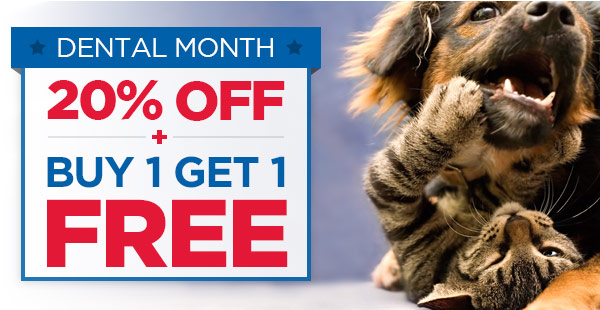 Dental Month: 20% OFF + BUY 1 GET 1 FREE