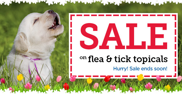 Spring sale on flea & tick topicals
