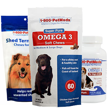 Keep your pet's skin & coat healthy