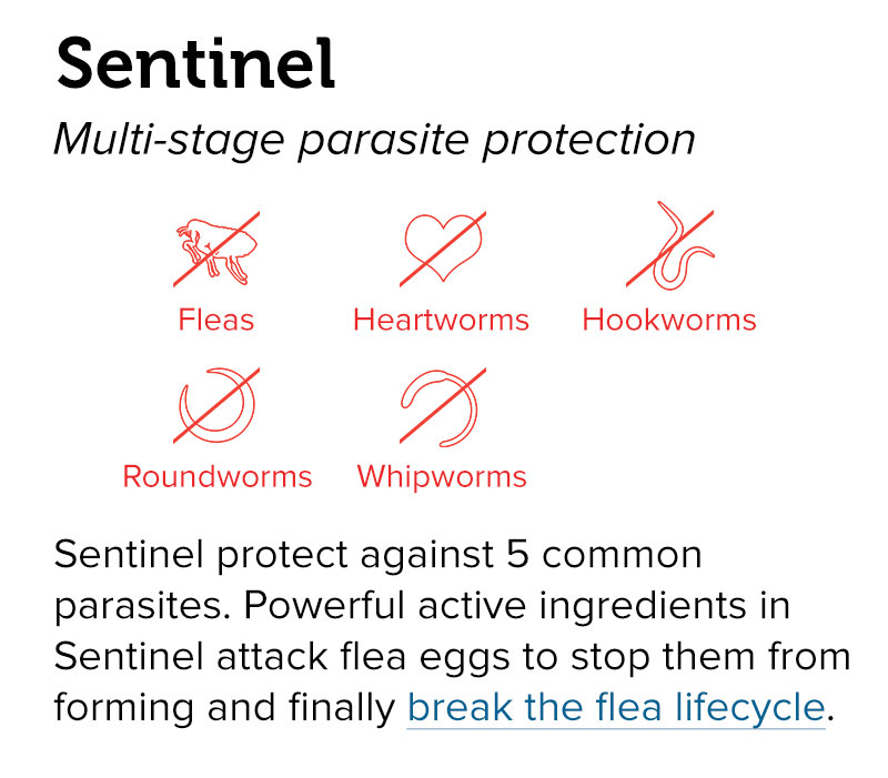 Sentinel - Multi-stage parasite protection