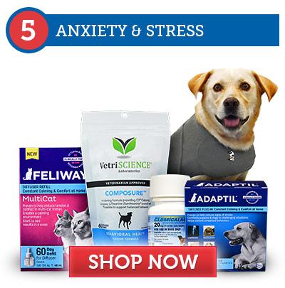 5. Anxiety & Stress