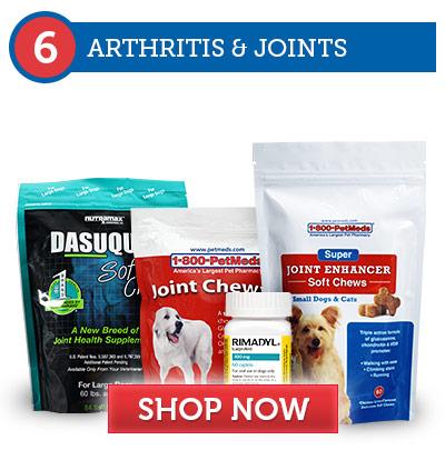 6. Arthritis & Joint Damage