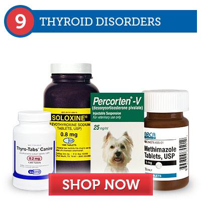 9. Thyroid Disorders