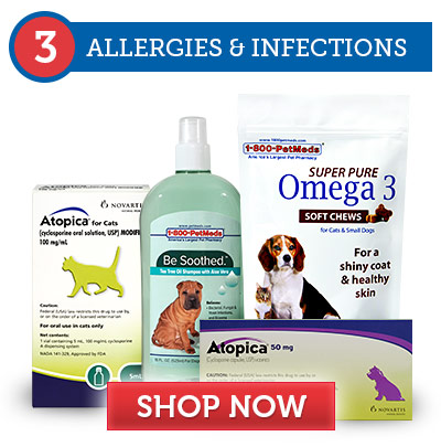 3. Allergies & Infections
