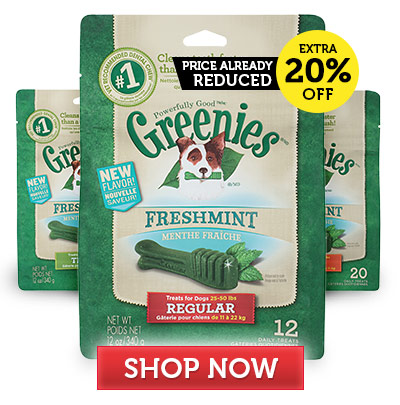 Greenies Freshmint