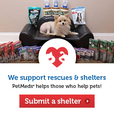 We support rescue & shelters