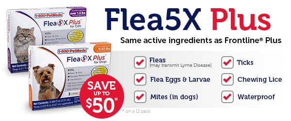 Introducing Flea5X Plus - Generic to Frontline Plus