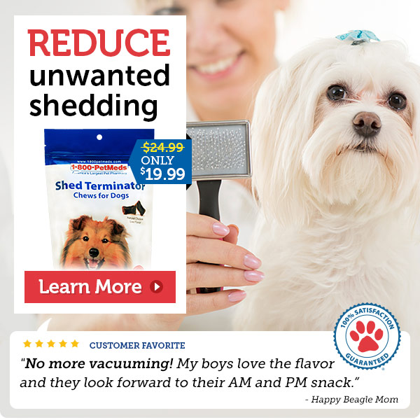 Shed Terminator Chews For Dogs