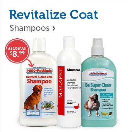 Revitalize Coat