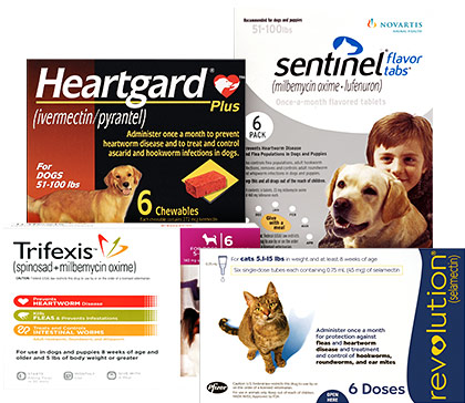 Protect from Heartworms