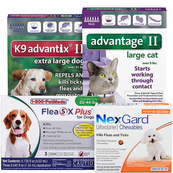 Flea & Tick Control and Prevention