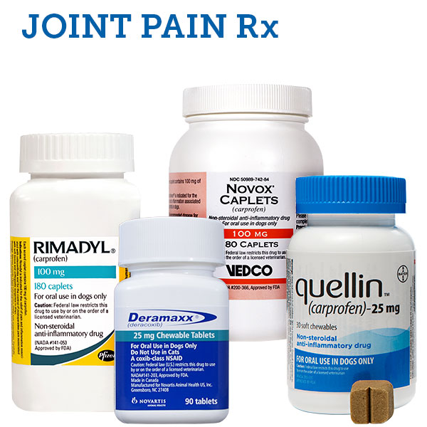 Pet Joint Pain Medications