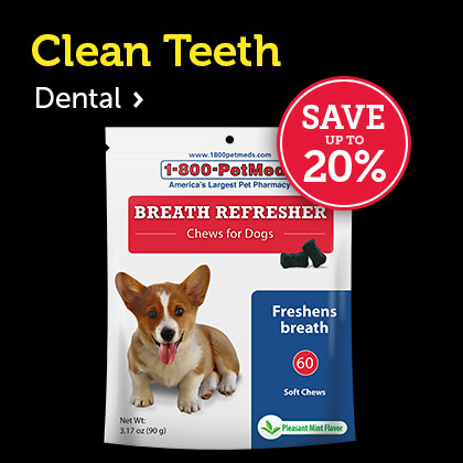 Pet Dental & Oral Care