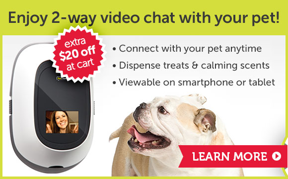 Enjoy 2-way video chat with your pet!