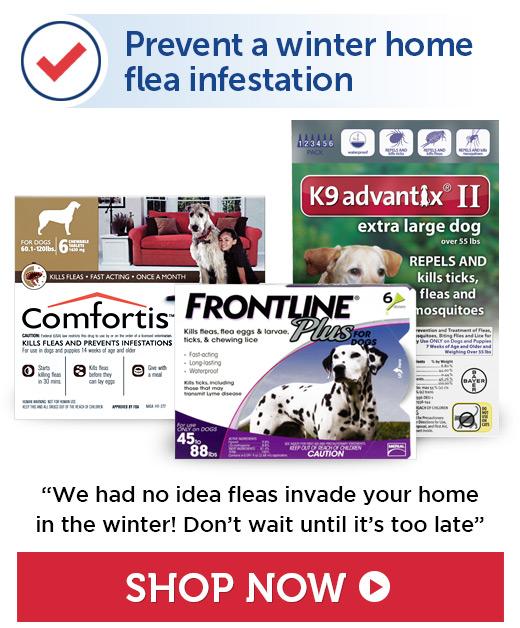 Prevent fleas & ticks
