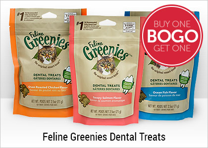 BOGO - Feline Greenies Dental Treats