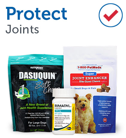 Protect Joints