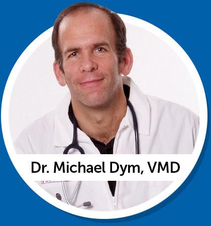 Dr. Michael Dym - VMD Veterinarian