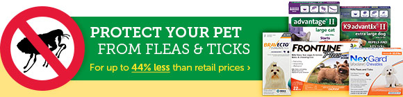 Protect Your Pet From Fleas & Ticks