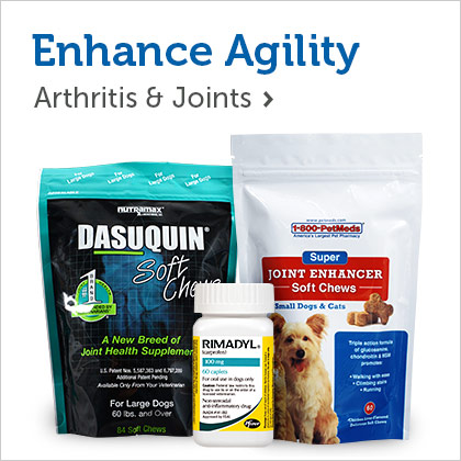 Enhance Agility