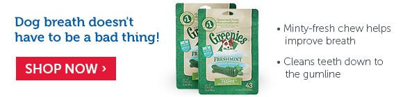 Greenies Freshmint Dental Treats for Dogs