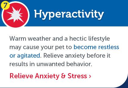 Relieve Enxiety & Stress