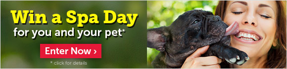 Enter for a chance to win a spa day for you and your pet